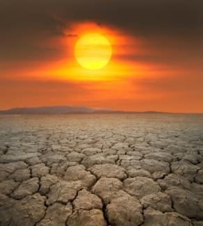 Scorched desert (iStock)